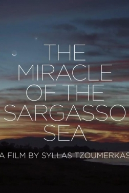The Miracle of the Sargasso Sea (2019)